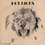 Pochette de l'album Hot Licks.